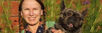 Tierarztkosten französische Bulldogge