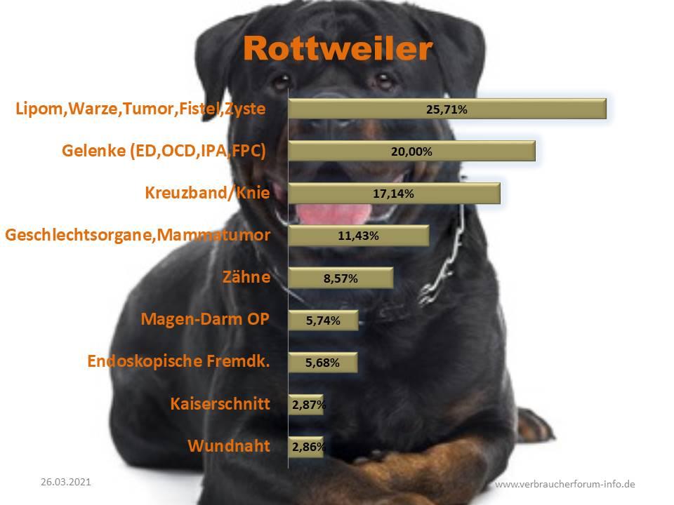 Statistik über die häufigsten Operationen beim Rottweiler