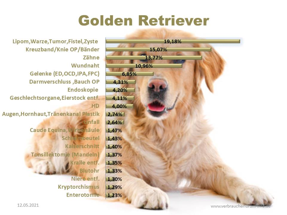Statistik über die häufigsten Krankheiten und Operationen beim golden Retriever