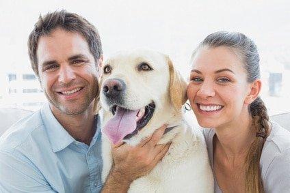 Der treue Labrador ist ein Freund fürs Leben. Schützen Sie Ihren Vierbeiner daher mit einer guten Hundeversicherung für Labrador!