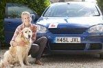 Hunde-Op Versicherung für Verkehrsunfälle