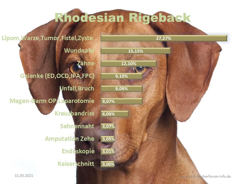 Statistik über die häufigsten Operationen beim Rhodesian Ridgeback