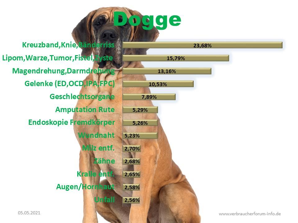 Statistik über häufige Operationen bei der Dogge